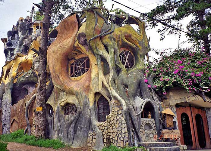 дом в виде дерева